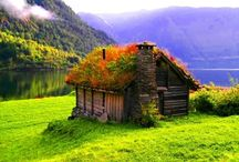 "My Little Dream Cabin / small houses, cottage, little home, Tiny dewellings, rustic places, cabins, forts, get away, fun camping, vacation homes. / by ""Whatever things are..."" <3 Philippians 4"