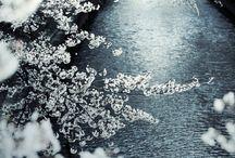 Japon / Notre prochain gros voyage.  Notre voyage de noce ! / by Angéline Renaud