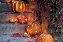 Fall / by Bonnie Williams