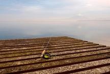 Flyfishing @ Bordemundo / by Bordemundo B&B Puerto Varas