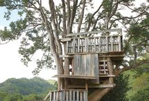 tree house ideas / by Priscilla Hamilton