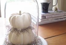 Halloween ideas / by Stephanie Marie