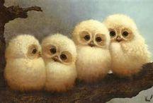 Owls / by Gordon Chandler