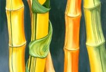 Bamboo (a few) / by Sam Pryor