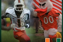 2013 Football Season Countdown  / Follow along as we countdown to the 2013 season opener against FAU. Get your season tickets today by calling 305-284-2263 or online at CanesTix.com. / by Miami Hurricanes
