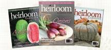 Heirloom Seeds / by Barbara Centofante