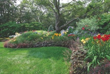 Gardens & Landscapes / by Cape Cod Life
