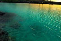 Hawaiian Birthday Trip / Our trip to Hawaii for my 40th / by Miki Salisbury Thompson