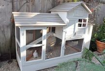 Outdoor Projects / by Jackie Tomlinson