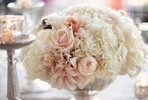 Wedding stuff / by Christine Murray
