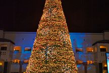 Festive Fairmont / We love decking the halls and getting into the holiday spirit!  / by Fairmont Hotels & Resorts