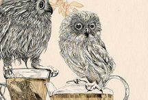 Owls / by Barbara Moore