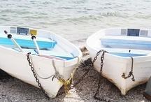 Sarasota and Longboat Key / by Kat Mac