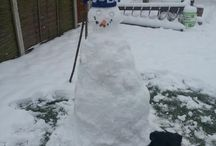Bluenose snowmen / by Birmingham City Football Club