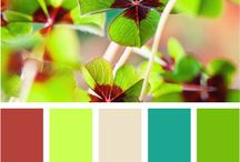 Color sets / by Ginie Hu