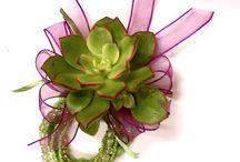 Wedding: Flowers / by Celina Obra Mendoza