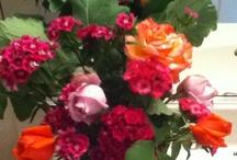 Flowers / by Hera Hub