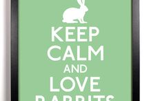 Rabbits / by Charlotte H
