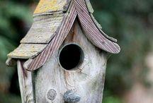 Birdhouses / by GotFree Energy.com