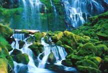 I must go here one day soon! / by Jean Kiplinger Bunner