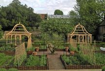 Kitchen Gardens / by Mary Terrell