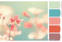 Color Ideas / by Miranda W