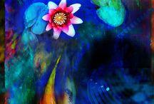 Colour / by Rhonda Whittington