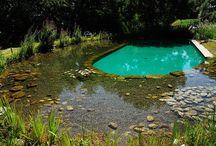 Natural Pools / Ideas for Natural pools / by Neisau Tuidraki