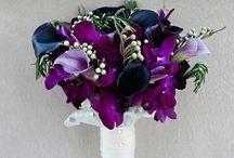 Blue & purple wedding / by MyItalian Wedding