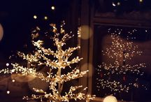 Christmas Tree Lights / Indoor or outdoor a Christmas tree needs lights! Here's some inspiration | http://www.lights4fun.co.uk/c/q/christmas-trees / by Lights4fun