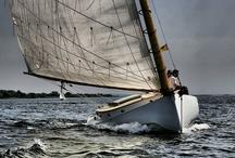 Sailing / by Renée Terheggen