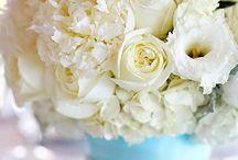 Wedding Flowers / by NZ Bride .co.nz