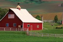 Barns-old and new / by Carolyn Schilling