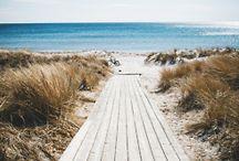 Sea / by Arleen Solly