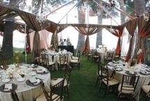 Tent Drapery & Lighting Inspiration / by Orlando Wedding & Party Rentals