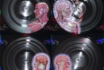 For the Metal Heads / Check out these awesome gift ideas for your neighborhood headbanger. / by POPmarket Music