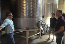The Winery / by Farmstead at Long Meadow Ranch