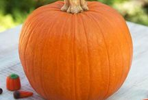 Pumpkins! / Fun and easy DIY pumpkin decorating ideas! / by Parenting