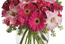 Pink Flowers / Pretty n' pink flowers, from the experts at www.aboutflowersblog.com. / by AboutFlowers