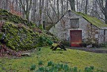 Scotland / by Gloria Scott