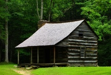 cabin in the woods  / by Jordan Elrad
