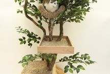 for my cat kids / by Linda Marulli