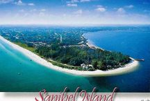 Sanibel / by Marilyn Moreside Bowditch
