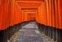 japan / by pm