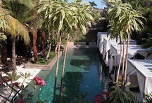 Gardens, Pools & Outdoor Spaces II / by Lisa Kennedy-Martin