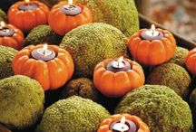 fall decor / by Stacey Marie