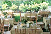 Wedding Ideas / by Heather Terrell
