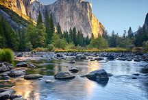 Yosemite / Our favorite things to do with kids in Yosemite National Park / by Travel for Kids