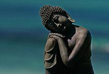 Buddha-Ohm / Sensual serene and calm.  / by Krysta Hill