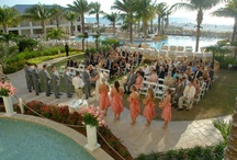 I AM ... Brides & Grooms  / The perfect location for a beach wedding / by Sandpearl Resort